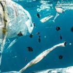 RD 1695/2012, de 21/12, Sistema Nacional de Respuesta ante la contaminación marina